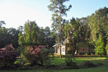 Casa Micanopy